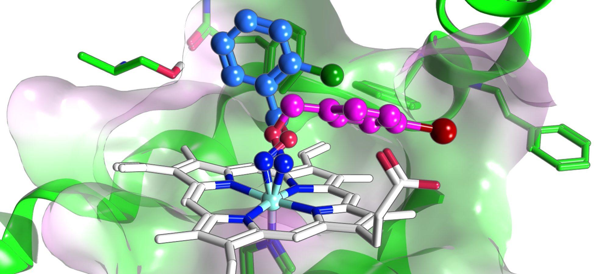 Malachowski BMC chemistry